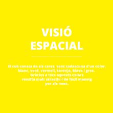 VISIOESPACIAL